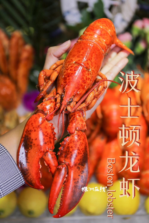 波士顿龙虾作为海鲜趴的头牌,一整只就足够有诱惑力,货真价实的龙虾